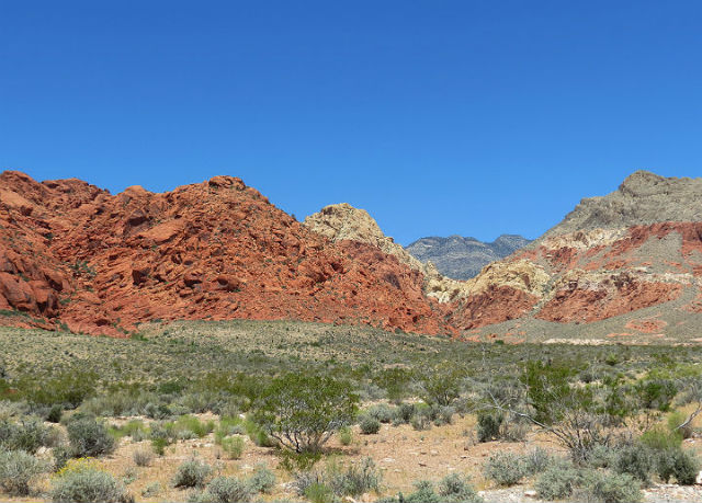 35 red rock_3011