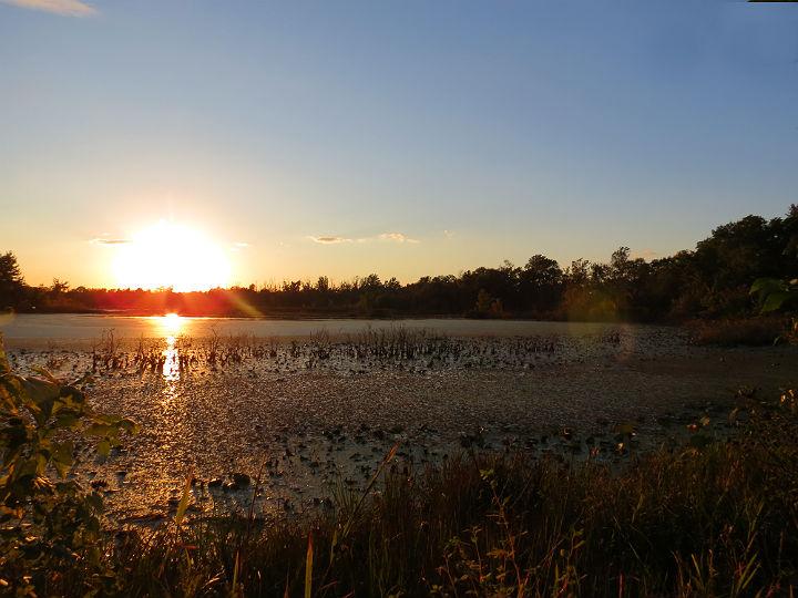 winters pond_5414
