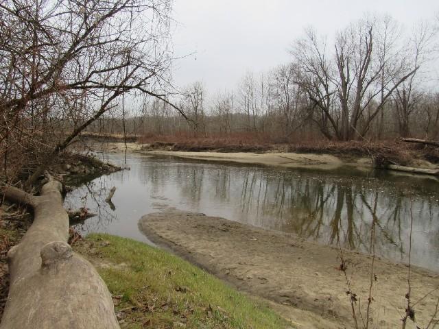 01 River Otter_1351